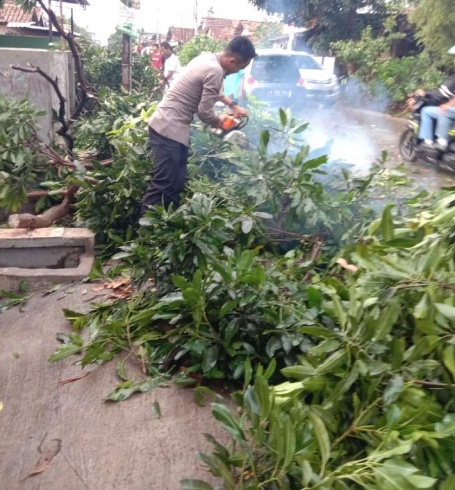 Cuaca Buruk, Ditsamapta dan Ditlantas Polda Banten Bersihkan Pohon Tumbang