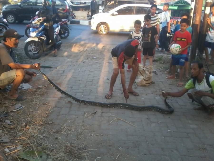 Mantan Dandenpom Bogor Resmi Jabat Dandenpom Jaya 1 Jatake