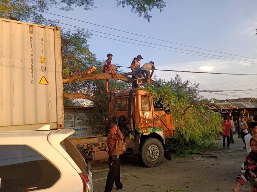 Pohon Besar di Tabrak Truk, Tak ada Korban Jiwa