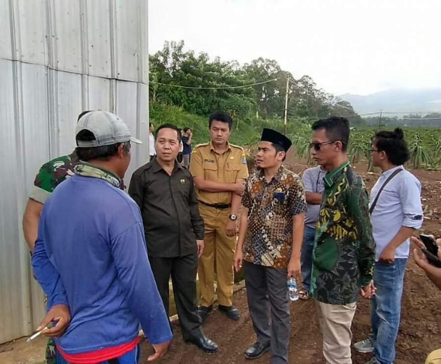 Komisi I Akan Panggil Pengusaha Perkebunan Buah Naga